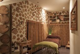 Massage Antwerpen (Hot Stone massage) - Ceder Ton
